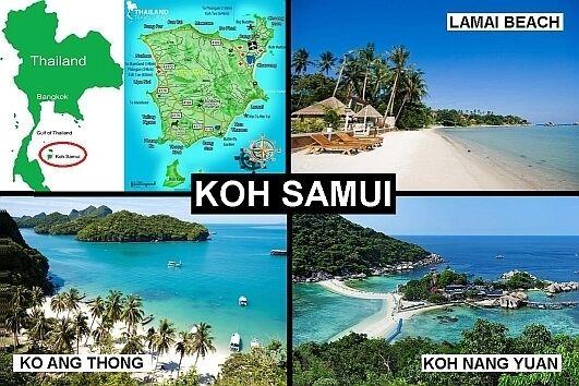 Ko Phi Phi fridge magnet Thailand travel souvenir