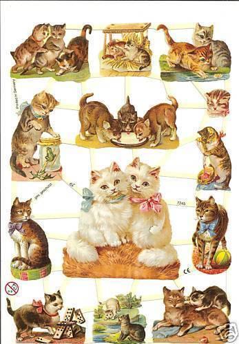 1 Bogen Glanzbilder Poesie Katzen ef 7245 Nr.225