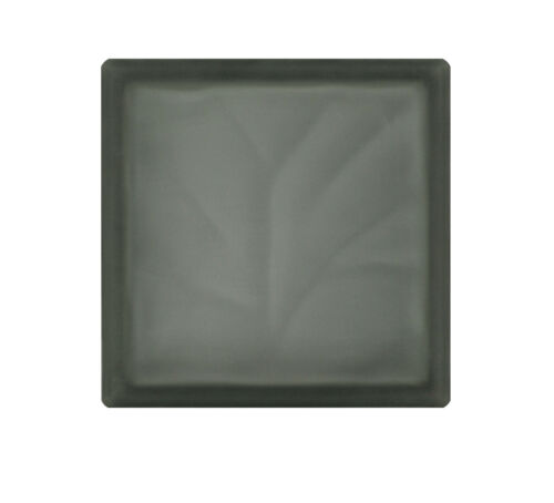 5 pièce Briques de Verre Nuage Grise 2 face satinée 19x19x8 cm