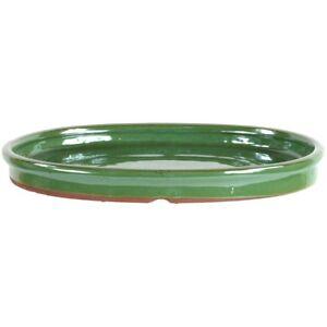 Sottovaso-bonsai-25x19-5x2-5cm-asparago-ovale-U25OHG