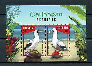 Grenada 2016 MNH Caribbean Seabirds 2v S/S Booby Boobies Birds Stamps