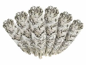 White-Sage-Cali-Smudge-Stick-6-Bundles-House-Cleansing-Made-in-USA