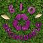 Hemway-Eco-Friendly-Craft-Glitter-Biodegradable-1-40-034-100g thumbnail 111