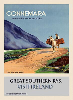 Connemara Pony Ireland Irish Dublin Travel Vintage Poster Repro FREE SHIP in USA