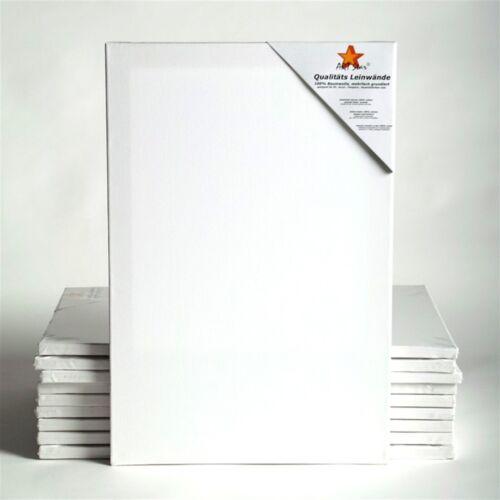 10 ART-STAR Leinwände auf Keilrahmen 40x60 cm