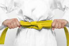 Shaolin Kempo Karate Jiu-Jitsu Yellow Belt Home Study Course - GM Jim Brassard