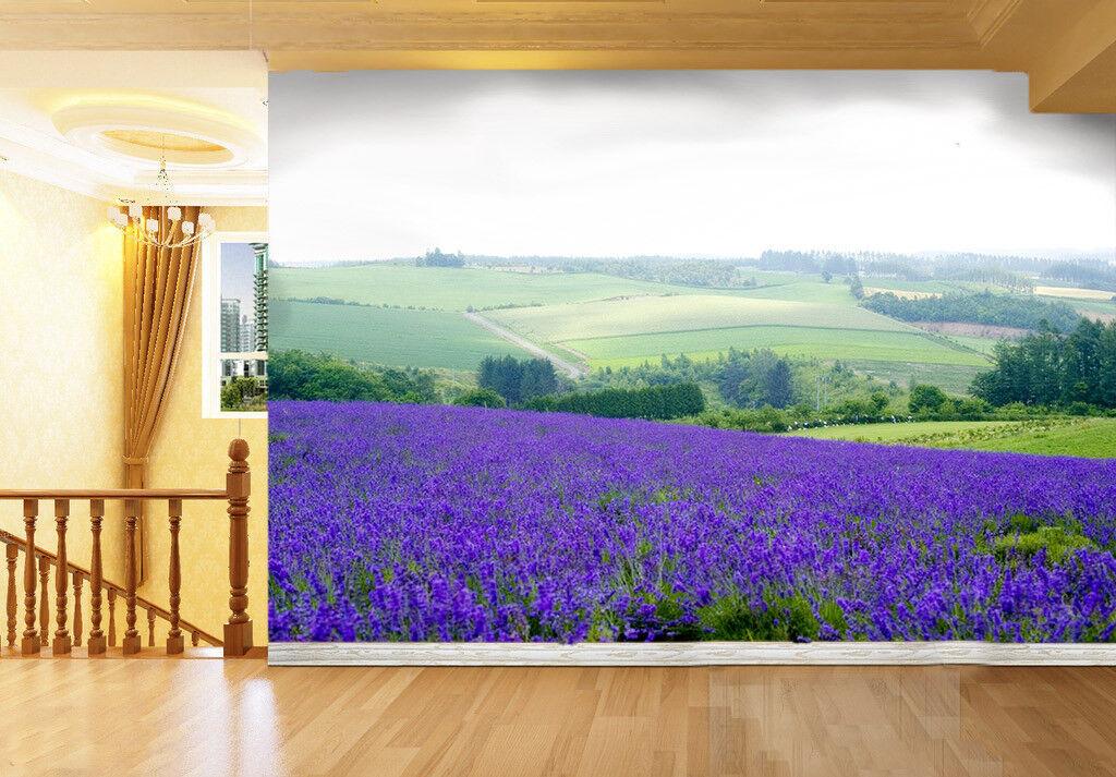 3D Lavendel Feld Hügel 712 Tapete Wandgemälde Tapete Tapeten Bild Familie DE | Roman  | Zahlreiche In Vielfalt  | Erste Qualität