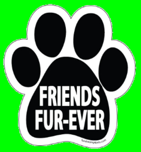 PAW MAGNET,Dogs Dog Cat Pet Rescue Charity FRIENDS FUR-EVER