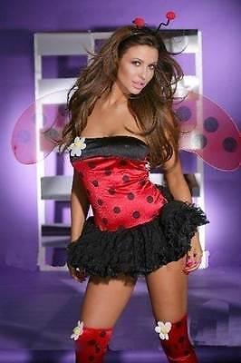 Aggressiv Sexy Ladybug Womens Fancy Dress Costume Uk 8-12 Ladies One Size Gesundheit Effektiv StäRken