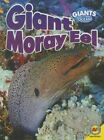 Giant Moray Eel by Anita Yasuda (Hardback, 2014)