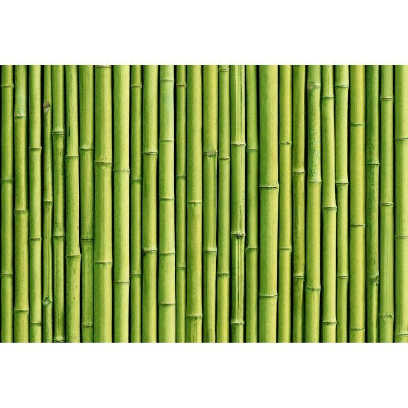 Stickers 11175 muraux géant déco : Bambous 11175 Stickers a9afec