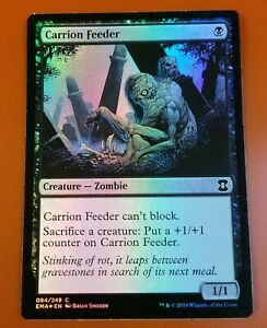 1x Carrion Feeder | FOIL | Eternal Masters | MTG Magic Cards