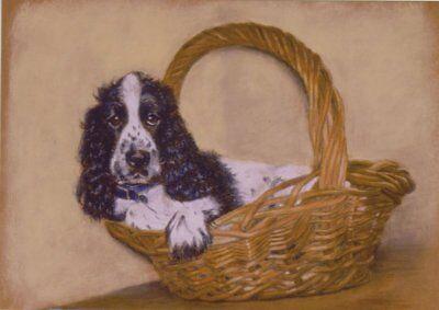 Cocker Spaniel Dog Puppy Blank Birthday Mothers Day Card