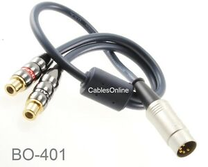 CablesOnline 1ft 7-Pin Din Male to 2-RCA Female Audio Cable for Bang /& Olufsen Naim BO-402K Quad.Stereo Systems