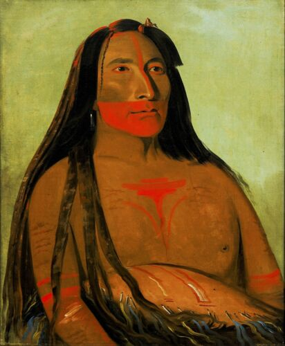 Second Chief by George Catlin Giclee Repro Canvas Four Bears Máh-to-tóh-pa