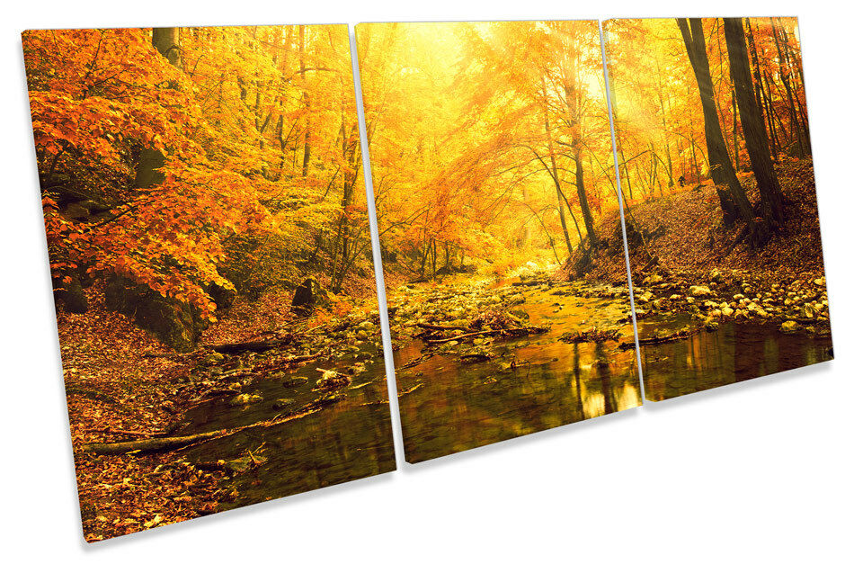 Sunset Forest River Landscape  CANVAS WALL ART TRIPLE Print Picture