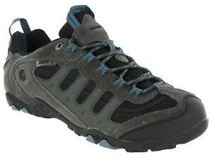 Hi-Tec Penrith Basso Impermeabili Da Passeggio Escursioni Scarpe da ginnastica Grey//Goblin blu da uomo