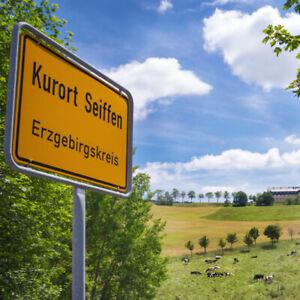3 Tage Erzgebirge Urlaub 4* Panorama Berghotel Seiffen 2 Pers inkl 1 Abendessen