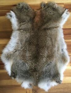 2x-WILD-MEADOW-Rabbit-Skin-Fur-Pelts-for-crafts-dog-training-fashion-TR10