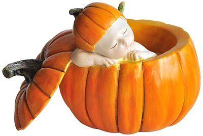 """2.5"""" Sleeping Fairy Baby in Orange Pumpkin Garden Terrarium Miniature Dollhouse"""