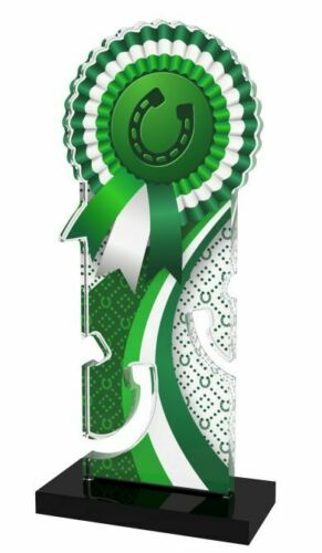 HORSE SHOE GOLD EQUESTRIAN ROSETTE ACRYLIC 180mm TROPHY *FREE ENGRAVING* 3 SIZES