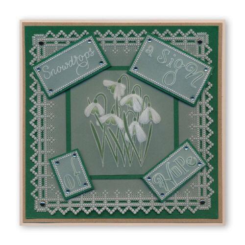 Placas De Sellos groovi pergamino de grabación en relieve de claridad-palabra cadenas-libre de Reino Unido P/&p