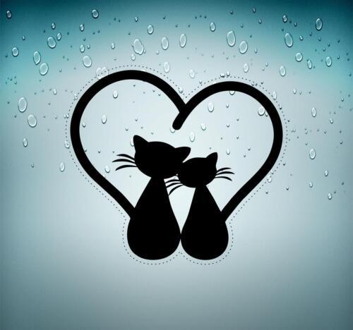 Decal sticker vinyl decor room art wall kids macbook cat love cute r2