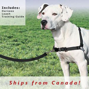 PetSafe/Premier No Pull Dog EASY WALK HARNESS , Black | eBay