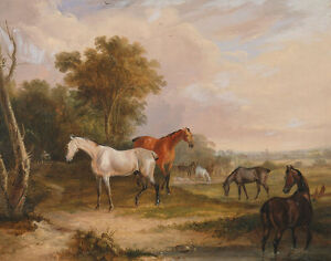 A Grey Stallion Grazing With Mares Turner Pferde B A3 01821 Lovely Luster Art Able Horses Grazing