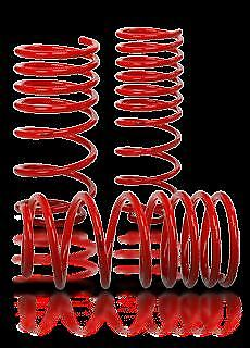 VMAXX LOWERING SPRINGS FIT SEAT Ibiza Evo II 1.9TDi att. shorten top of 99>02