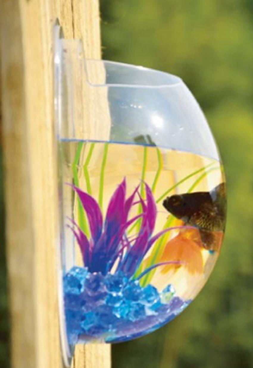 Fish Tank Bowl Bubble Aquarien Hanging Terrarium Goldfish