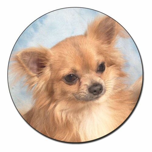AD-CH2FM Chihuahua Dog Fridge Magnet Stocking Filler Christmas Gift
