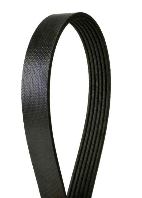 Serpentine Belt-Power Steering Continental Elite 4060505