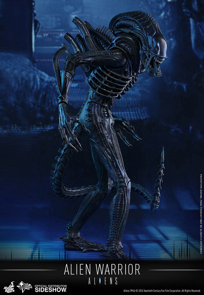 1/6 Sixth Scale Movie Masterpiece Alien Warrior Figure Hot Toys Used JC