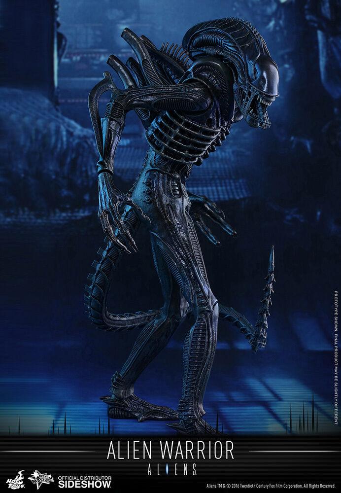 1 6 Sixth Scale Movie Masterpiece Alien Warrior Figure Hot Toys