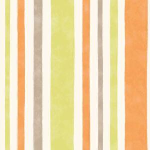 Fine-decor-Carrousel-Large-Rayure-Papier-Peint-DL21142-Naturel-Vert-Orange