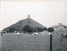 WATERLOO c. 1950 - Monument Commémoratif La Butte du Lion  Belgique - Div 5322