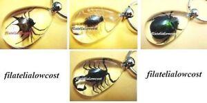 Llavero-Insectos-Reales-Amuleto-Suerte-Escorpion-Escarabajo-Arana-Spider