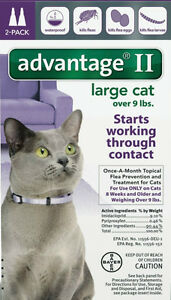 Advantage II for Large Cat Over 9 lbs. 2 Month Supply(no box)