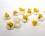 Die-cast-Plastic-Little-Chicks-and-Eggs-Set-of-12-German-Import-IV3-3623 thumbnail 11