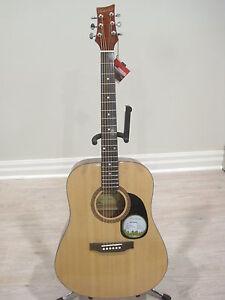 Beaver Creek BCTD101 Dreadnought Acoustic Guitar with Guitar Bag