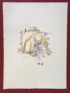 Henk-Visch-in-sospeso-farblithographie-2005-a-mano-firmata-e-datata