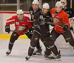 Anahiem Ducks player worn Practice jersey NHL