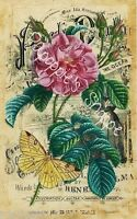 Fabric Block Vintage Pink Flower Yellow Butterfly Sheet Music Chic Shabby