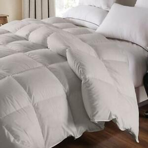 Luxury-Comforter-Siberian-Goose-Down-1200-TC-100-Egyptian-Cotton-Gray-Color
