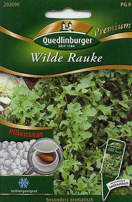 Wilde Rauke Rucola  Sonderpreis  Quedlinburger Premium Saatgut