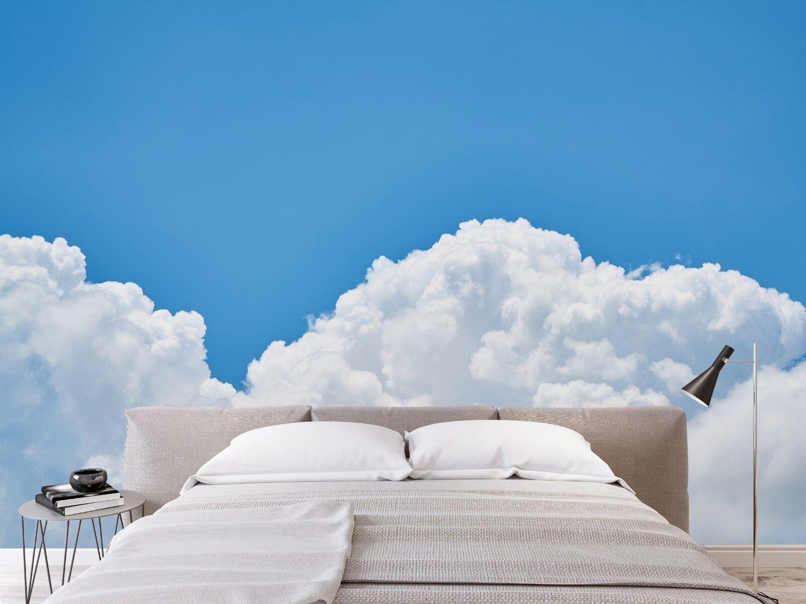 3D Blau Sky Clouds 7066 Wallpaper Mural Paper Wall Print Indoor Murals CA Summer