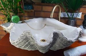Details About Giant Clam Shell Bathroom Sink Basin Vessel Bowl Art Sculpture In Grey Or Blue