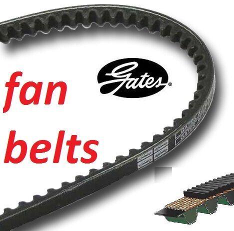fan alternator v-belt Gates Fan Belt 1225mm 9.5mm section 6229MC AV 10