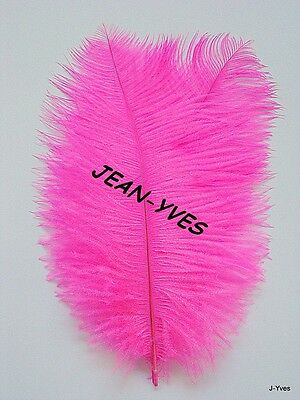 "20 BRIGHT PINK OSTRICH FEATHERS 10-12/""L GRADE *B*"